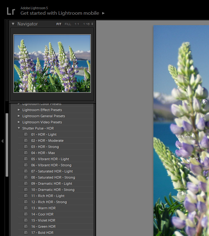 Howto Install Lightroom Presets