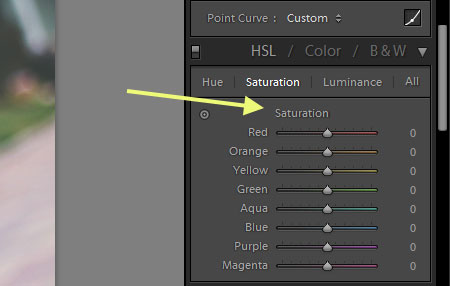3 Ways to Save Time with Our Photoshop Actions and Lightroom Presets