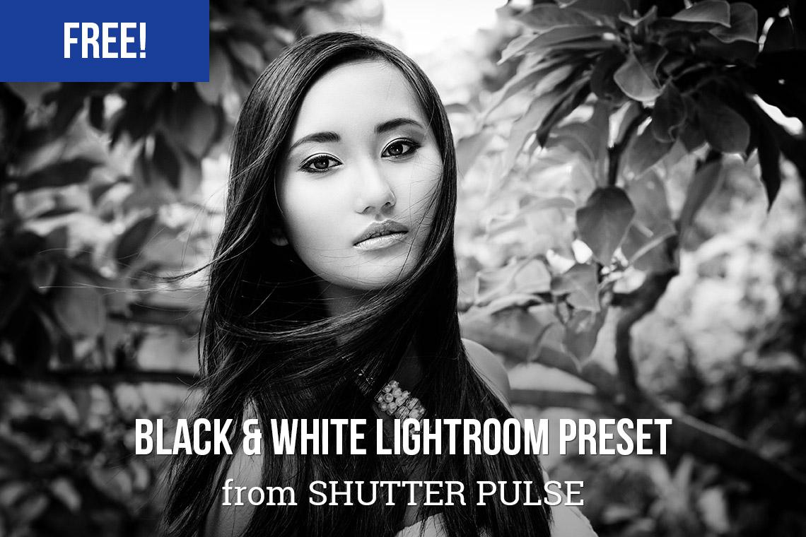 Bold Black & White Lightroom Preset
