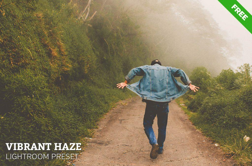 Free Vibrant Haze Lightroom Preset
